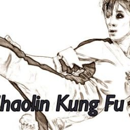 Kung Fu Woman Performing A Side Kick