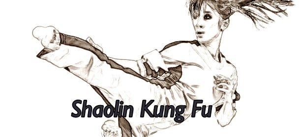 Kung Fu Woman Performing A Side Kick