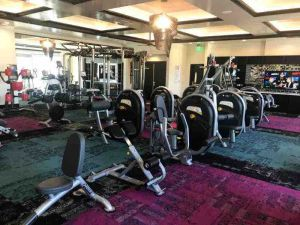 apartment gyms with pin loaded hoist equipment cables pull up bars and cardio equipment